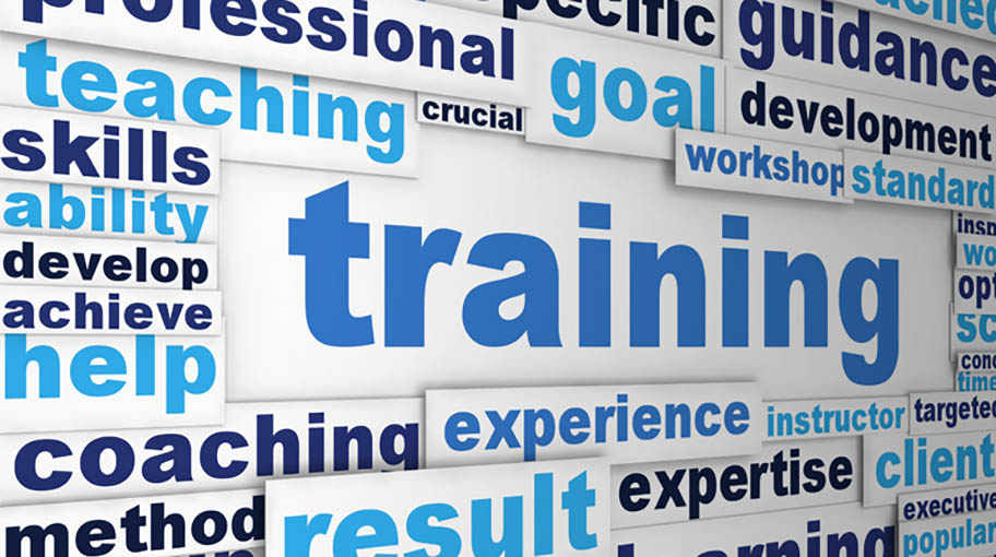 special issues in training and employee development
